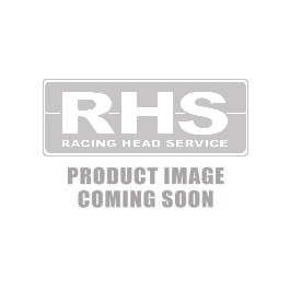 Pro Action™ 24° (320cc Intake Runner/119cc Chamber) Bare Aluminum Cylinder Head